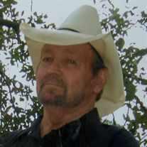 Mr. Dave Grubbs