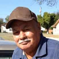 Dario P. Navarro